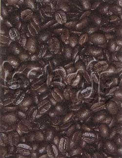 coffee20071025-12-4-1