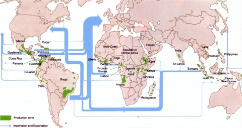 The map shows all the coffee-producing countries and the importation-exportation routes